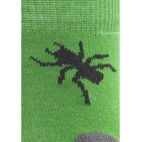 axant Kids Trekking Socks 3-Pack Green